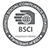 BSCI-edit.png#asset:128